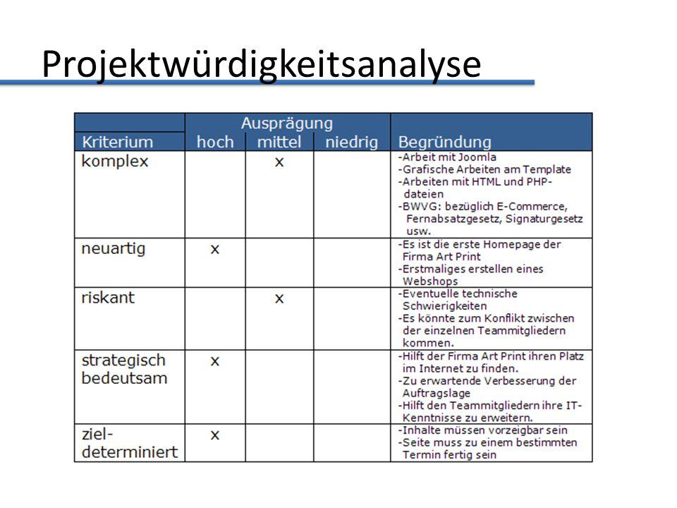 Projektwürdigkeitsanalyse