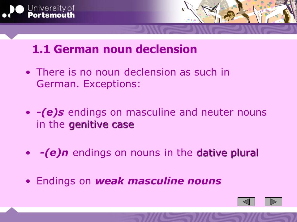 1.1 German noun declension