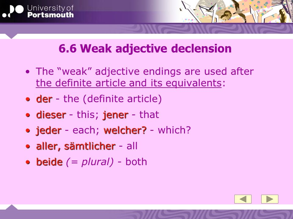 6.6 Weak adjective declension