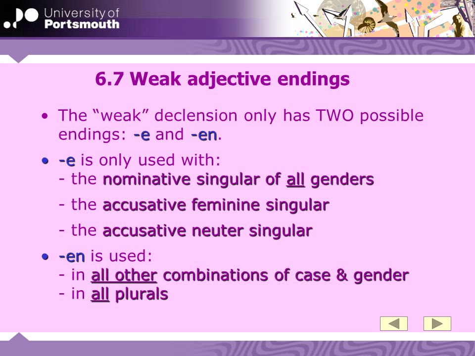 6.7 Weak adjective endings