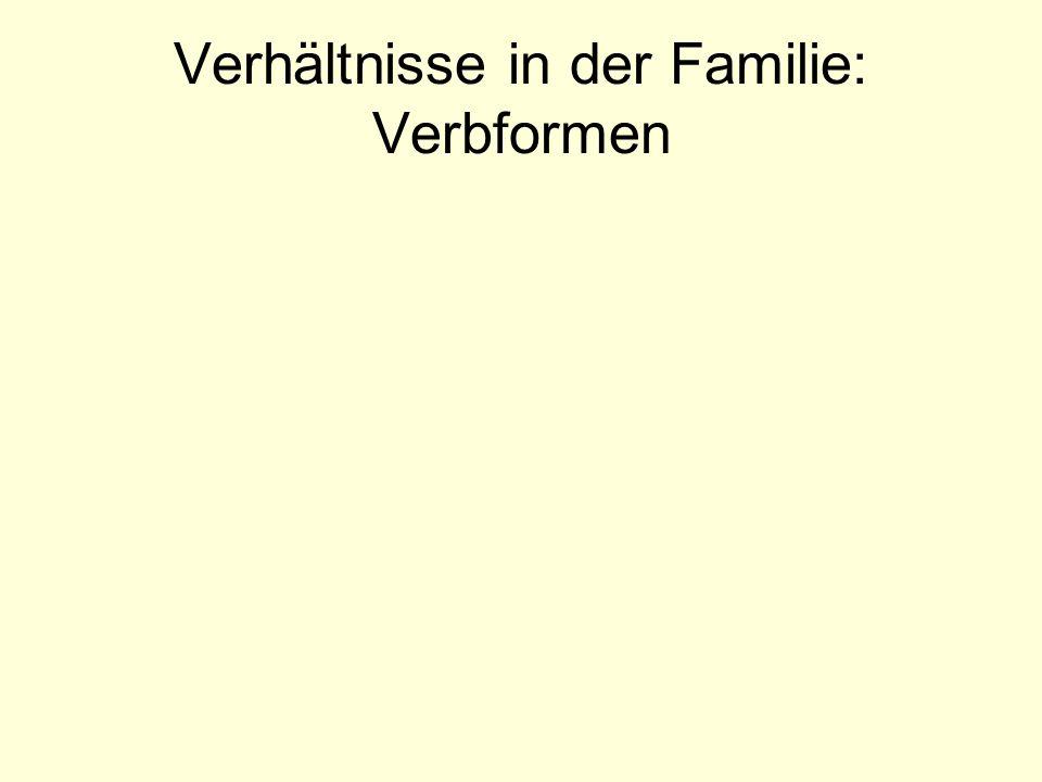 Verhältnisse in der Familie: Verbformen