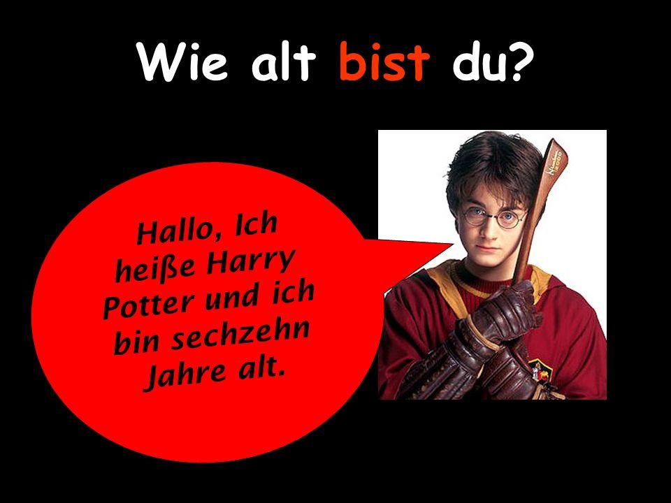 Hallo, Ich heiße Harry Potter und ich bin sechzehn Jahre alt.