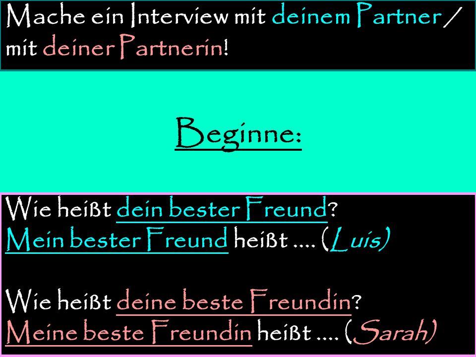 Mache ein Interview mit deinem Partner / mit deiner Partnerin!