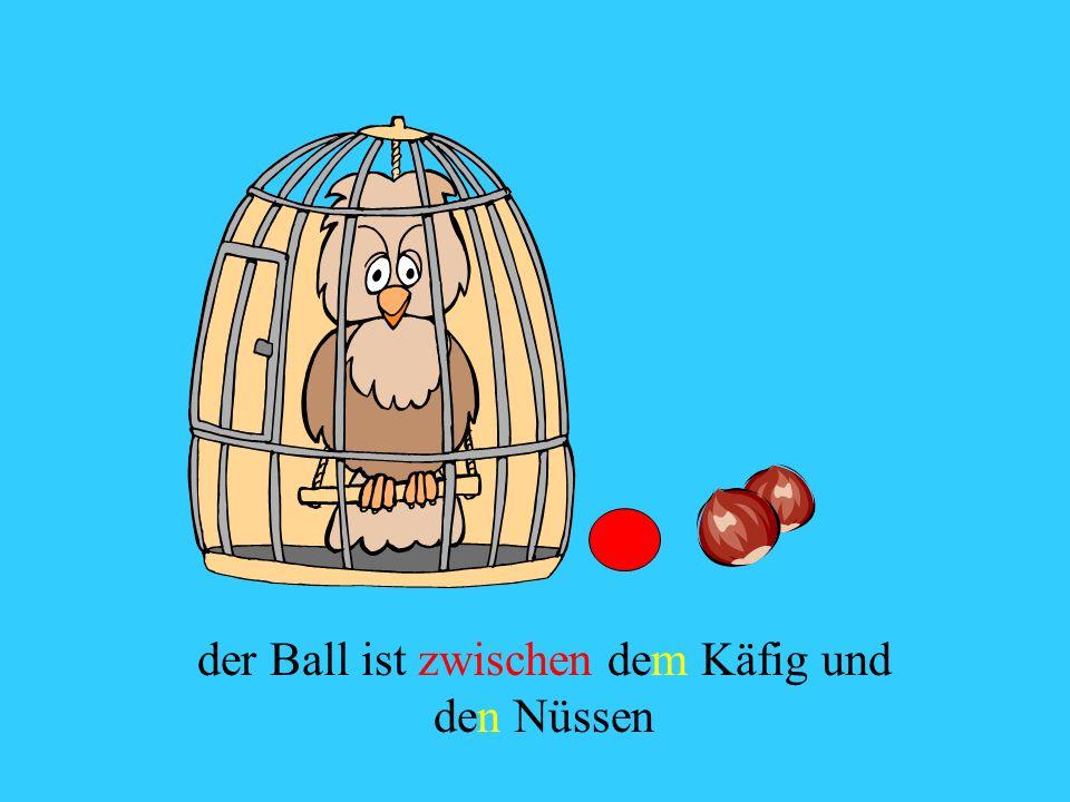 der Ball ist zwischen dem Käfig und den Nüssen