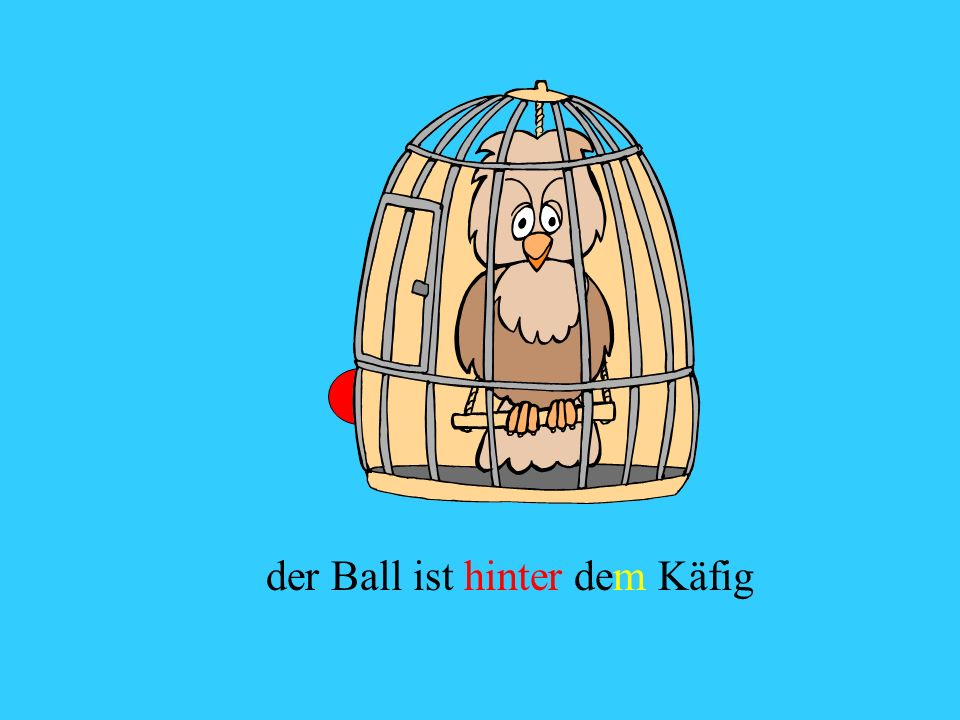 der Ball ist hinter dem Käfig