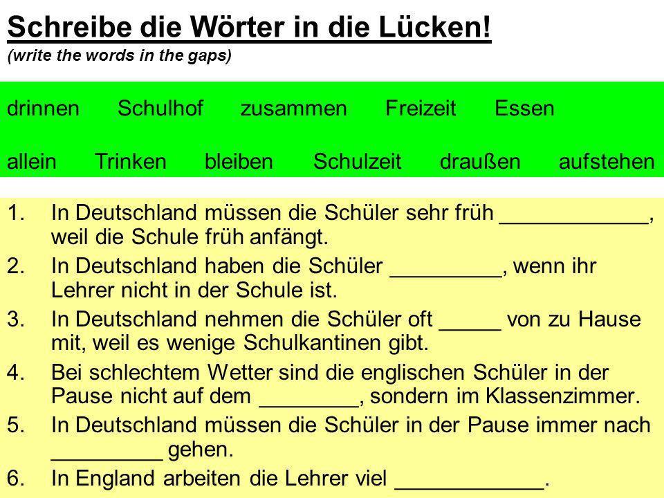 Schreibe die Wörter in die Lücken! (write the words in the gaps)