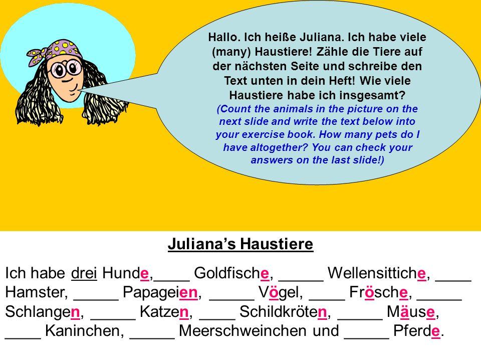 Hallo. Ich heiße Juliana. Ich habe viele (many) Haustiere
