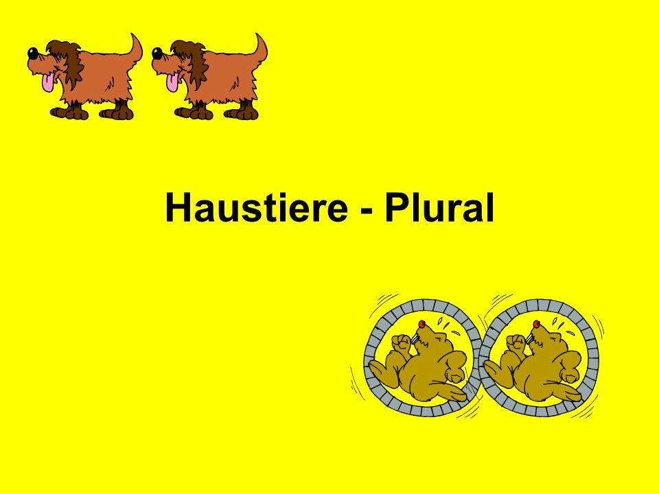 Haustiere - Plural