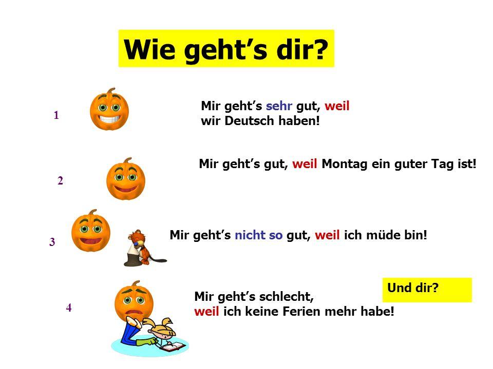 Wie geht's dir Mir geht's sehr gut, weil 1 wir Deutsch haben!