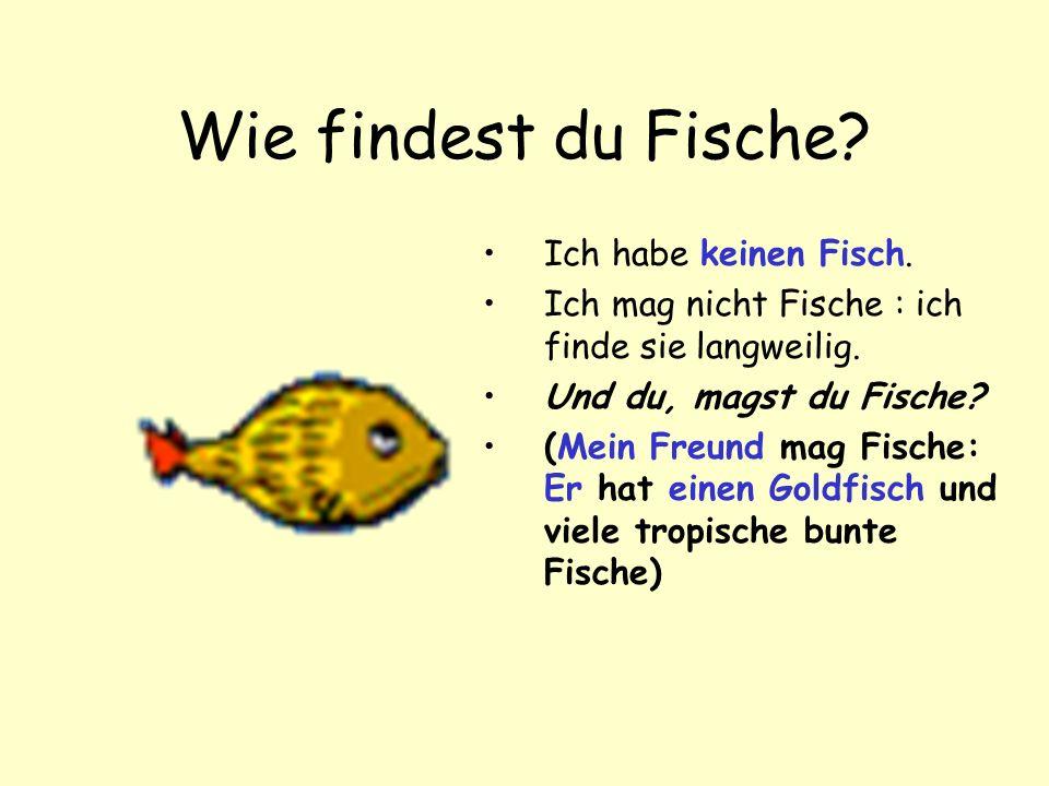 Wie findest du Fische Ich habe keinen Fisch.