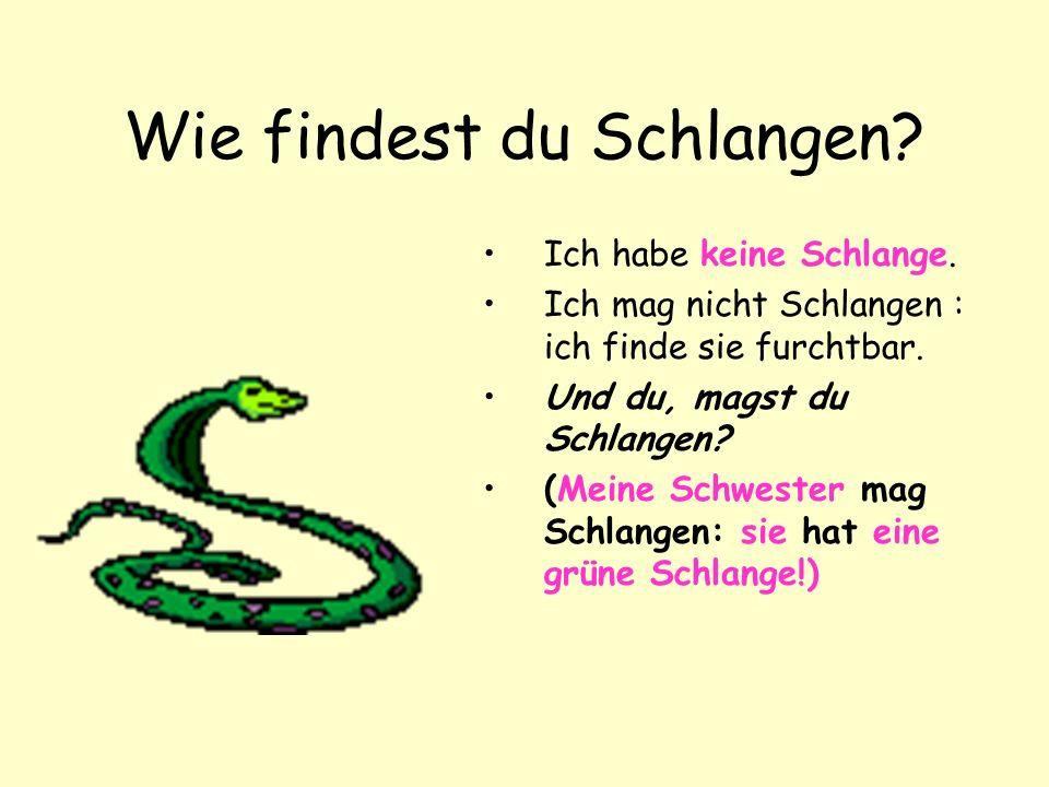 Wie findest du Schlangen
