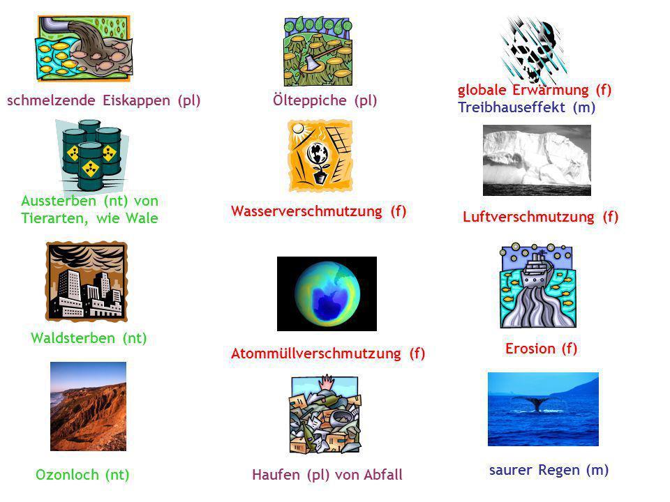 globale Erwärmung (f) Treibhauseffekt (m) schmelzende Eiskappen (pl) Ölteppiche (pl) Aussterben (nt) von.