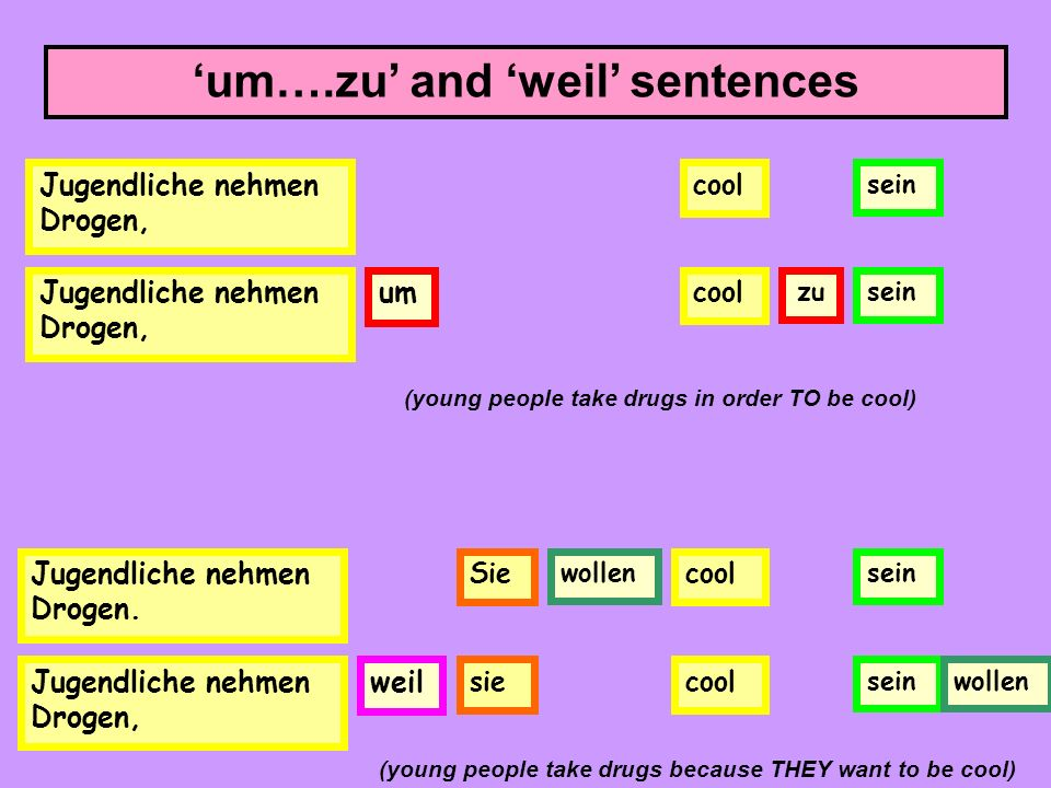 'um….zu' and 'weil' sentences