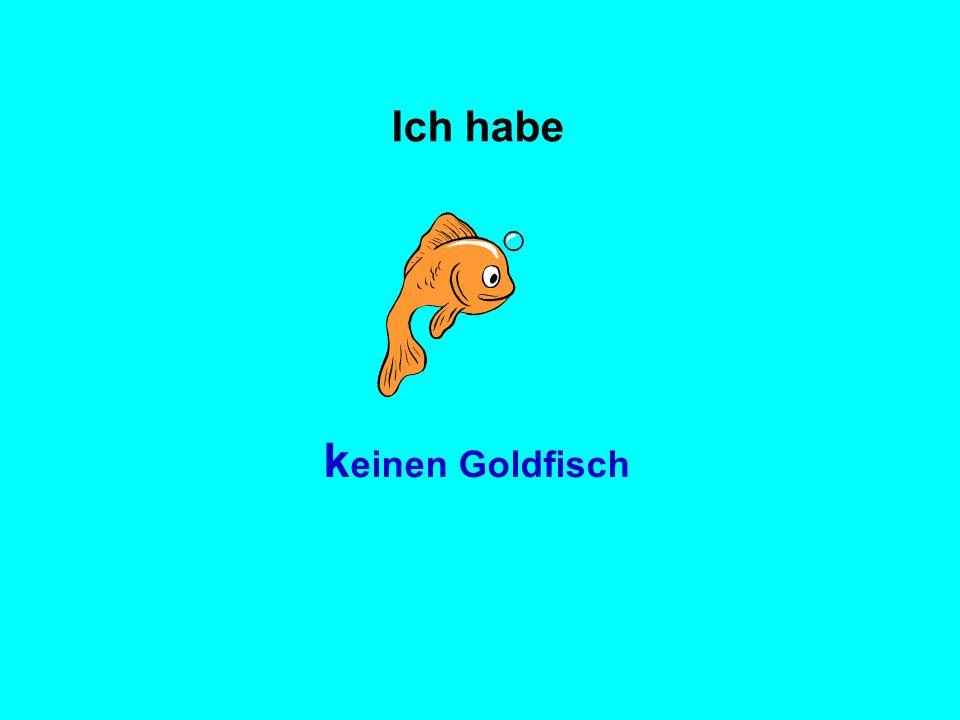 Ich habe keinen Goldfisch
