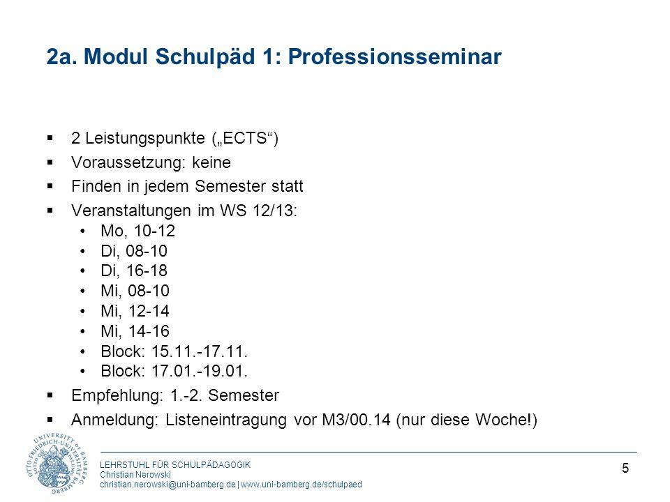 2a. Modul Schulpäd 1: Professionsseminar