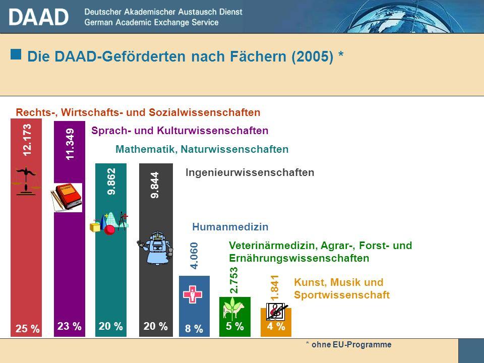 Die DAAD-Geförderten nach Fächern (2005) *