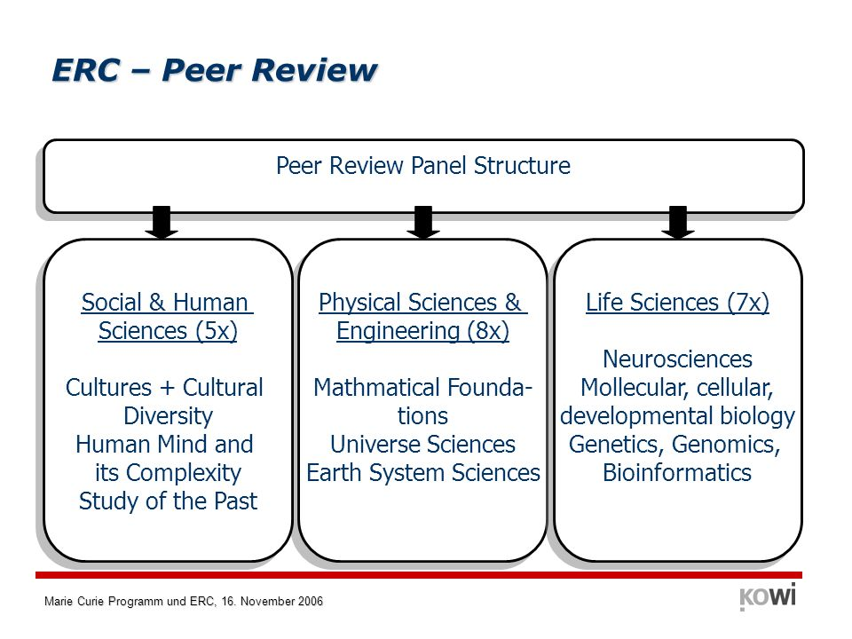 ERC – Peer Review Peer Review Panel Structure