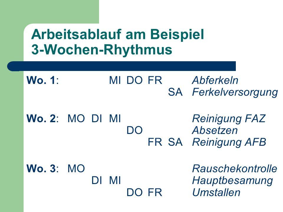 Arbeitsablauf am Beispiel 3-Wochen-Rhythmus