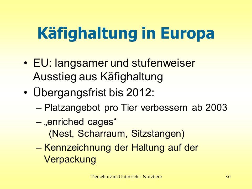 Käfighaltung in Europa