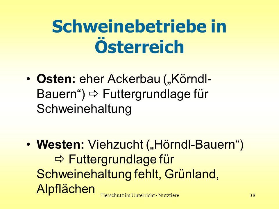 Schweinebetriebe in Österreich