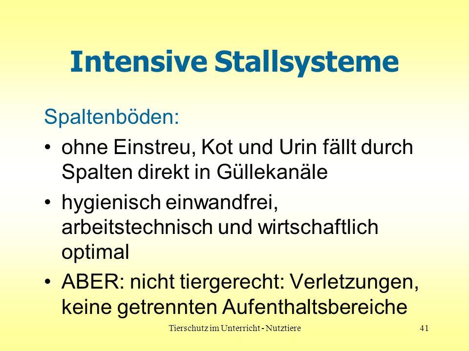 Intensive Stallsysteme