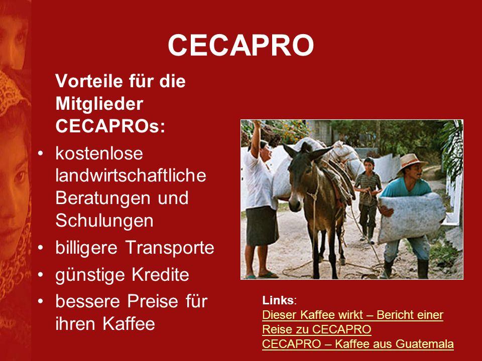 CECAPRO Vorteile für die Mitglieder CECAPROs: