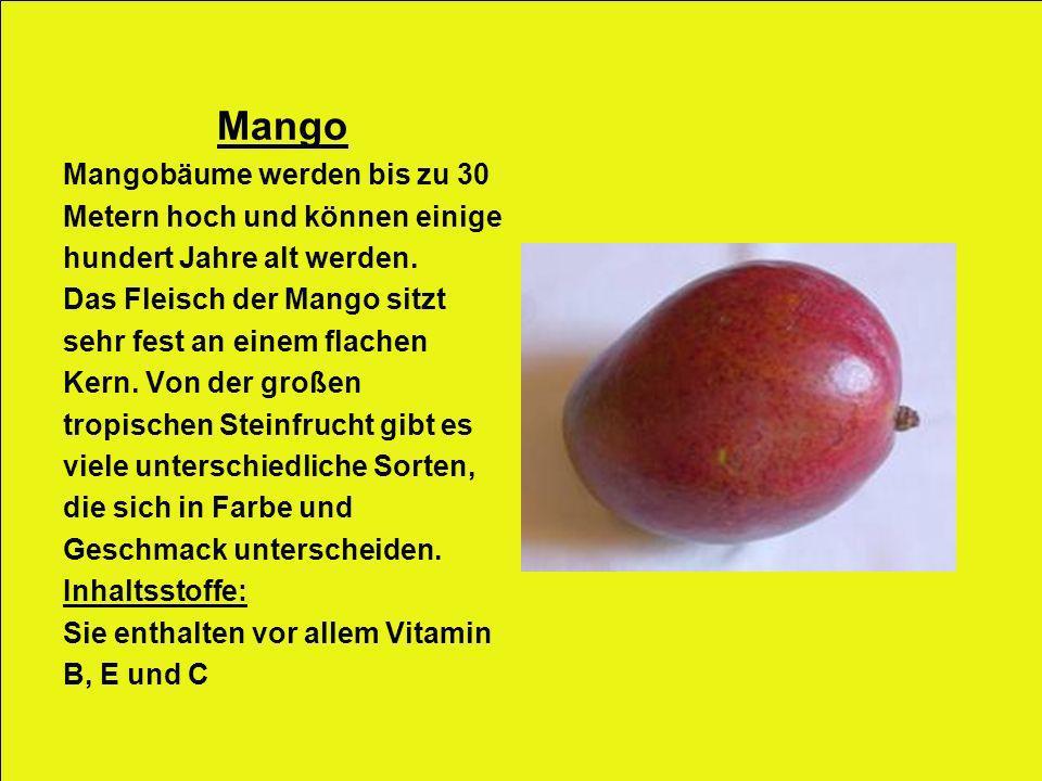 Mango Mangobäume werden bis zu 30 Metern hoch und können einige