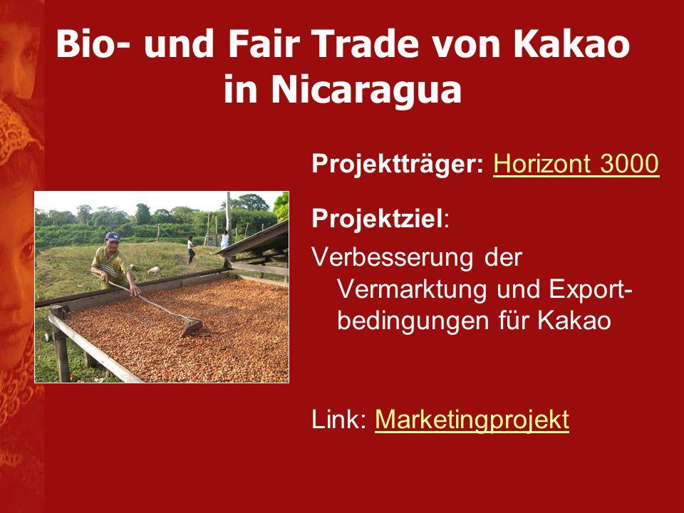 Bio- und Fair Trade von Kakao in Nicaragua