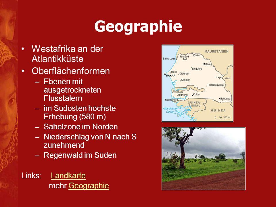 Geographie Westafrika an der Atlantikküste Oberflächenformen
