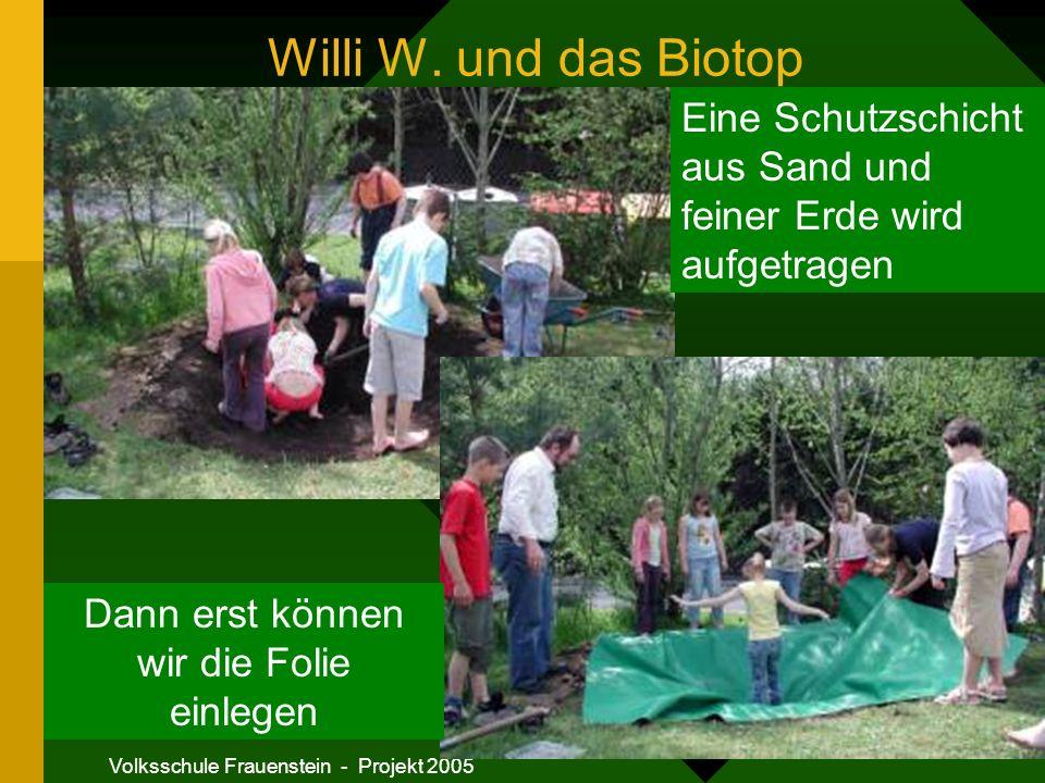 Willi W. und das Biotop Eine Schutzschicht aus Sand und feiner Erde wird aufgetragen. Dann erst können wir die Folie einlegen.
