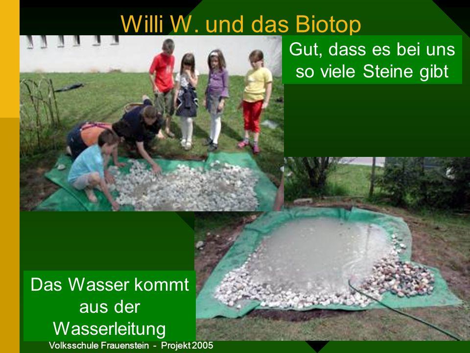 Willi W. und das Biotop Gut, dass es bei uns so viele Steine gibt