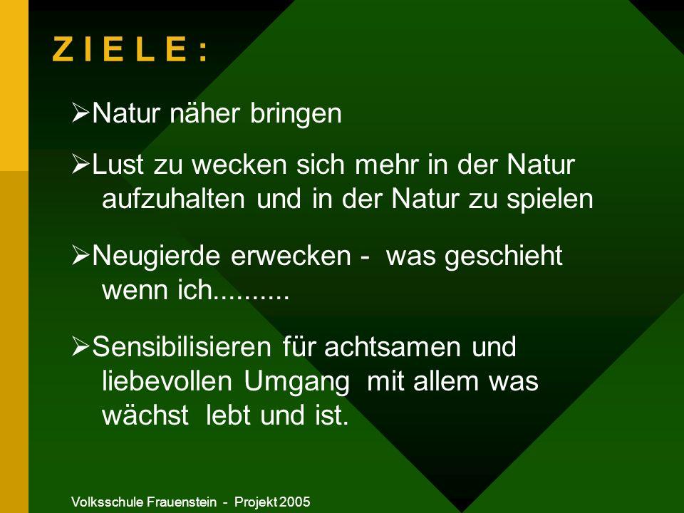 Volksschule Frauenstein - Projekt 2005