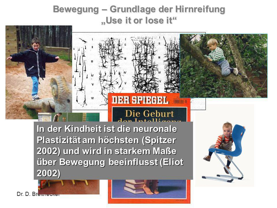 "Bewegung – Grundlage der Hirnreifung ""Use it or lose it"