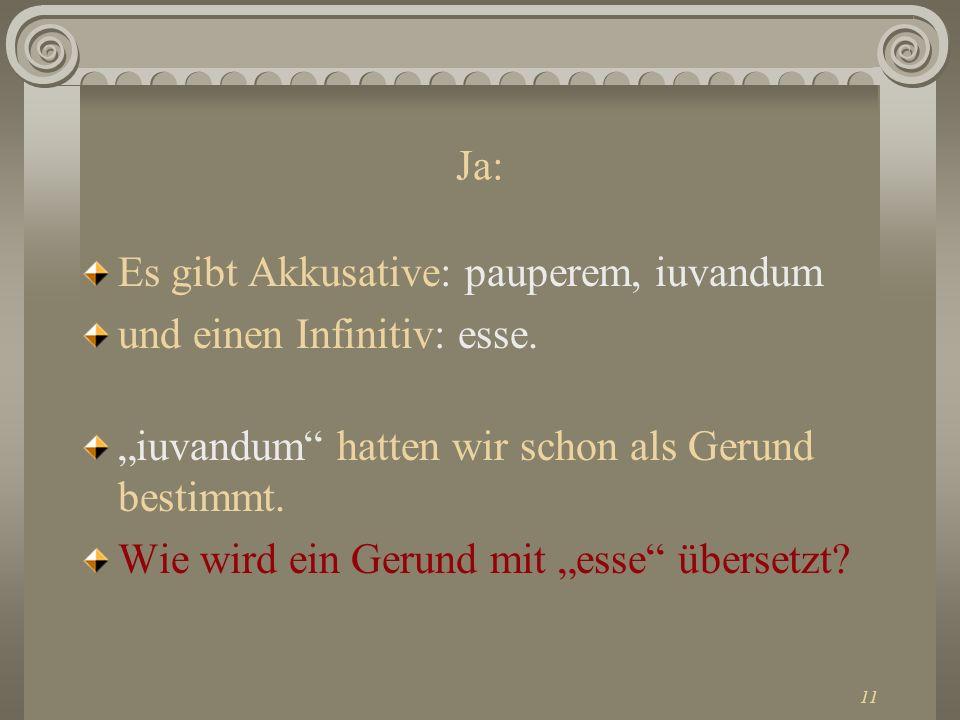 """Ja: Es gibt Akkusative: pauperem, iuvandum. und einen Infinitiv: esse. """"iuvandum hatten wir schon als Gerund bestimmt."""