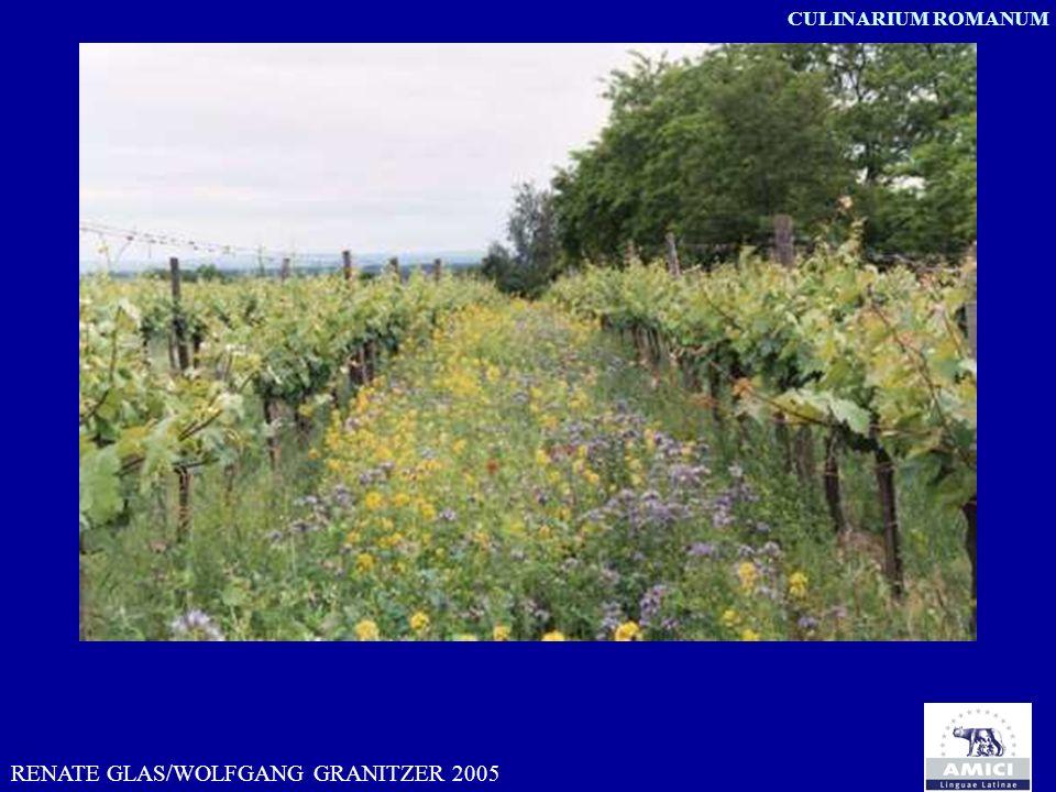 RENATE GLAS/WOLFGANG GRANITZER 2005