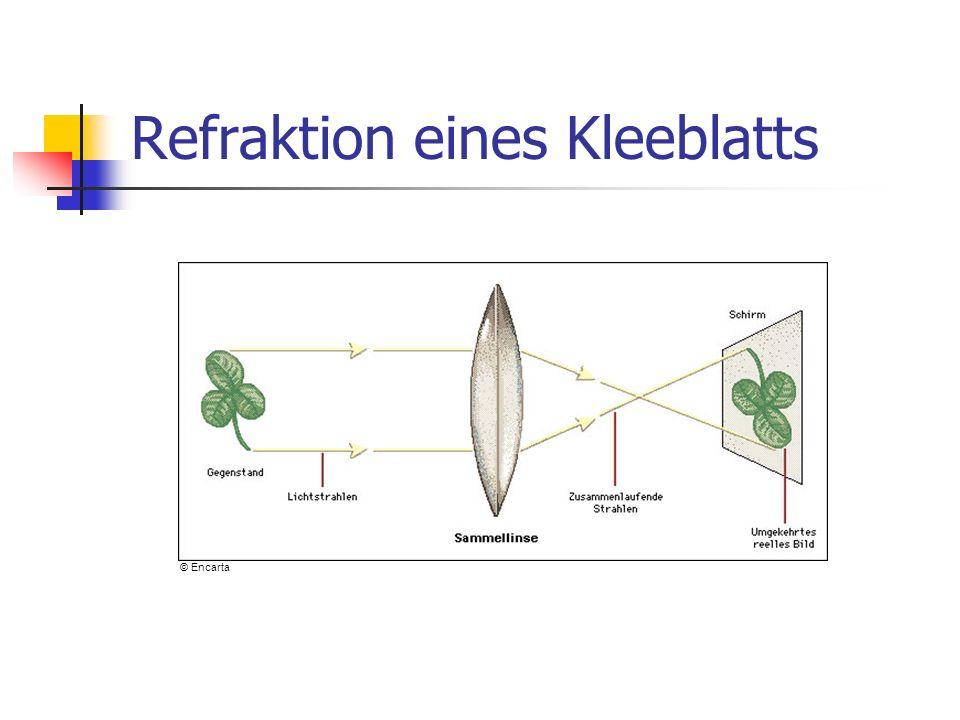 Refraktion eines Kleeblatts