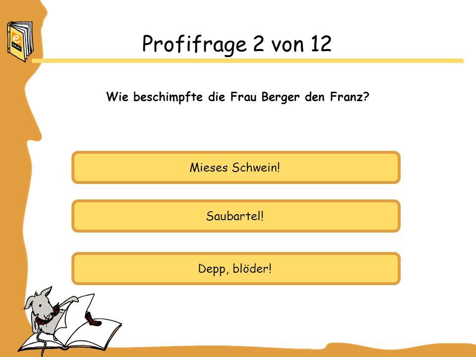 Wie beschimpfte die Frau Berger den Franz