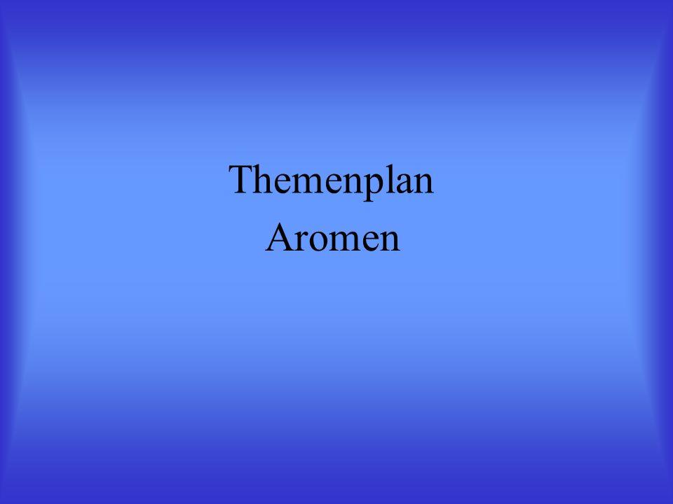 Themenplan Aromen
