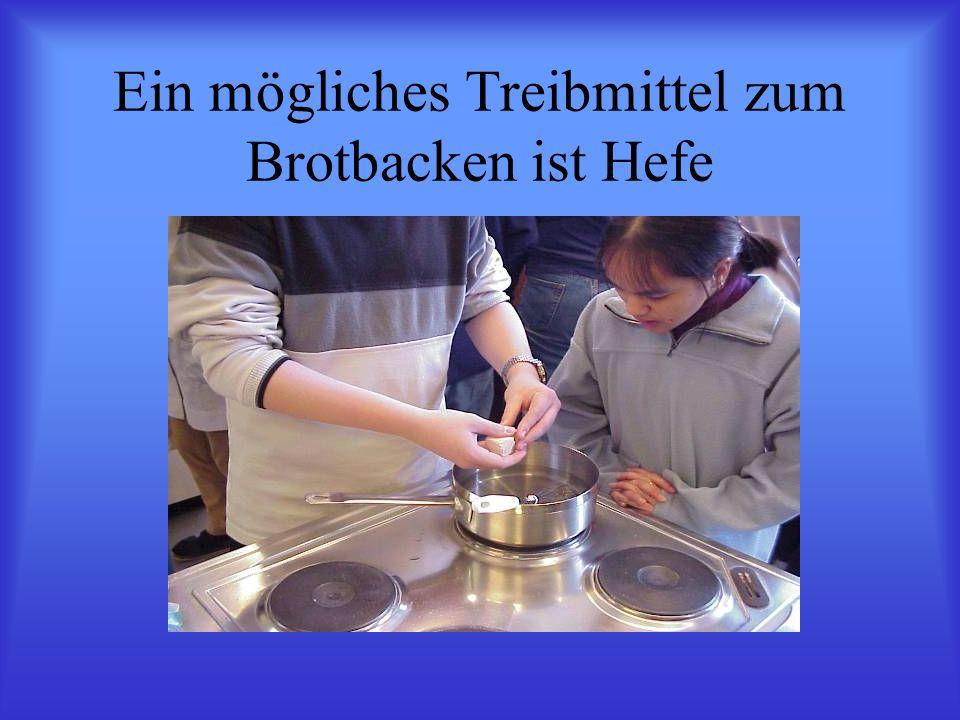 Ein mögliches Treibmittel zum Brotbacken ist Hefe