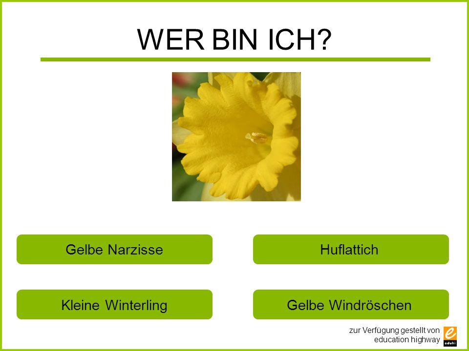 WER BIN ICH Gelbe Narzisse Huflattich Kleine Winterling