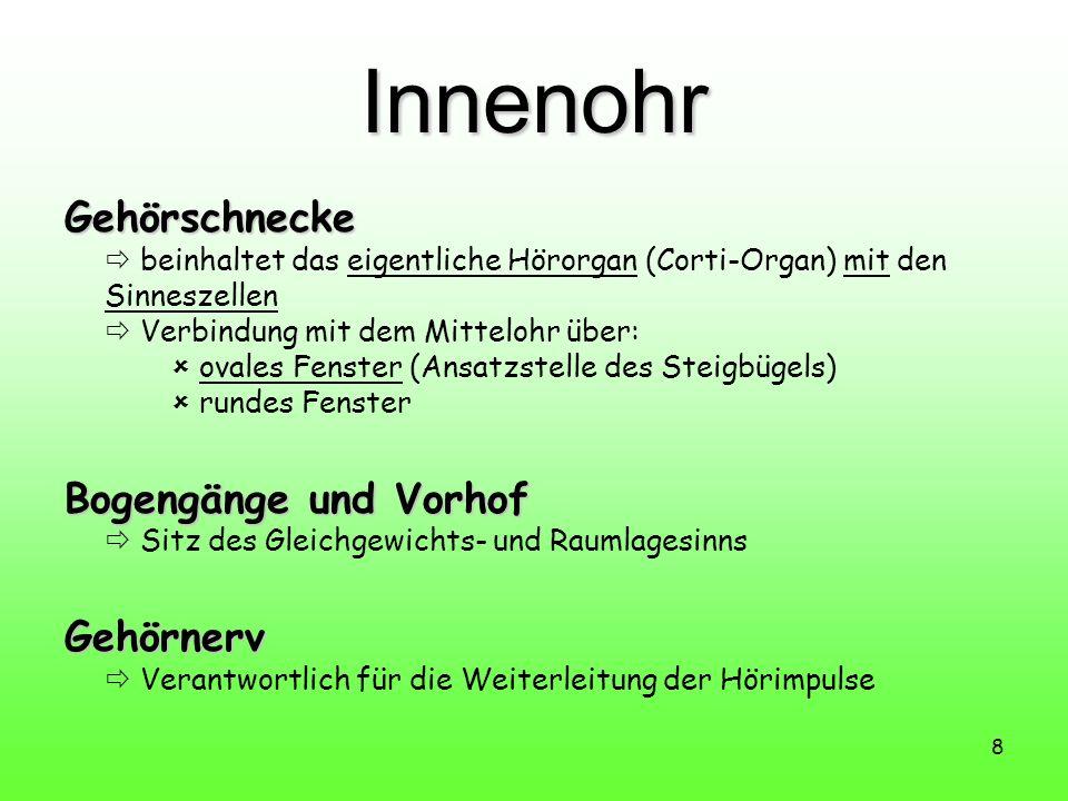 Innenohr