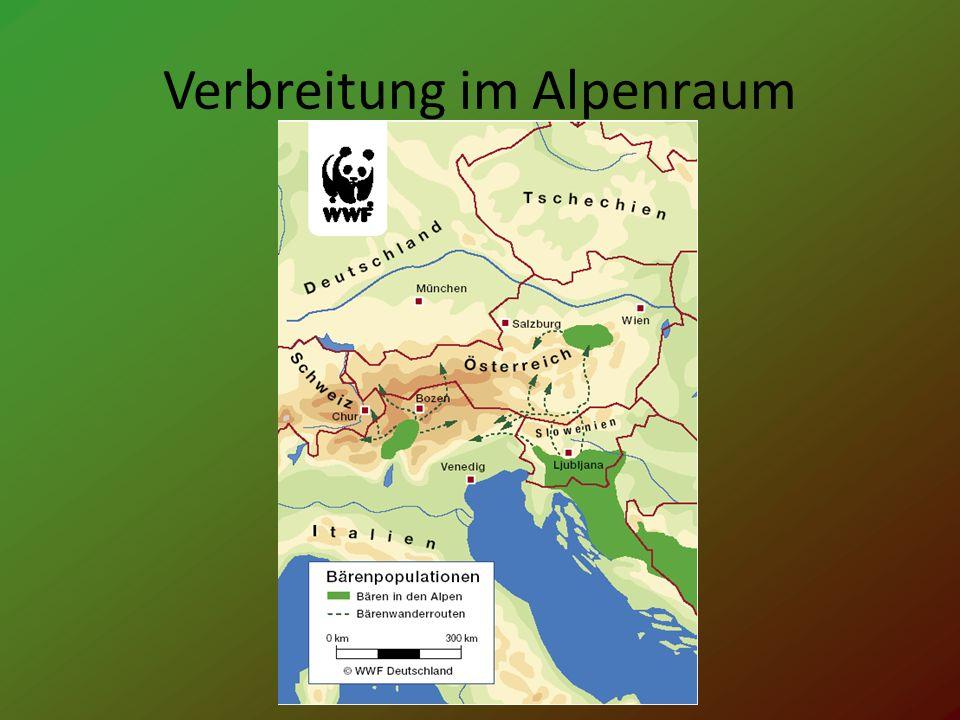 Verbreitung im Alpenraum