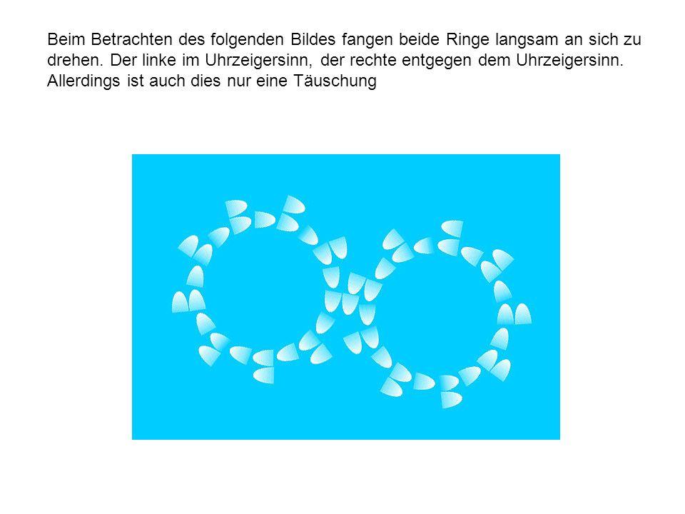 Beim Betrachten des folgenden Bildes fangen beide Ringe langsam an sich zu drehen.