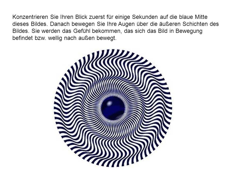 Konzentrieren Sie Ihren Blick zuerst für einige Sekunden auf die blaue Mitte dieses Bildes.