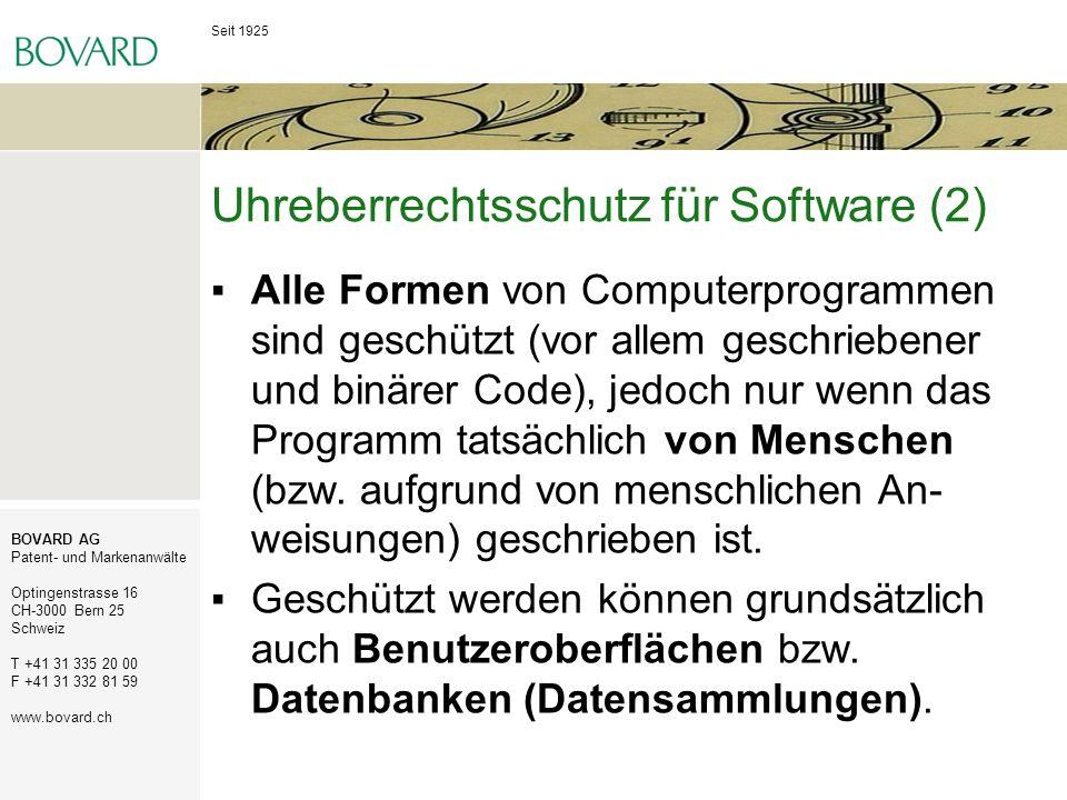 Uhreberrechtsschutz für Software (2)