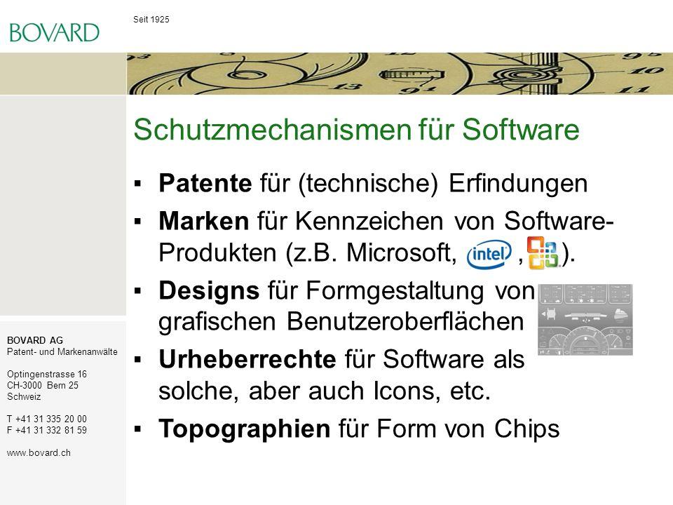 Schutzmechanismen für Software