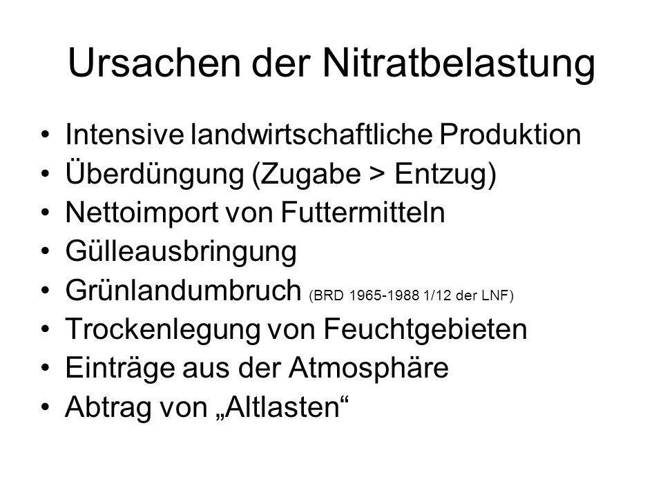 Ursachen der Nitratbelastung