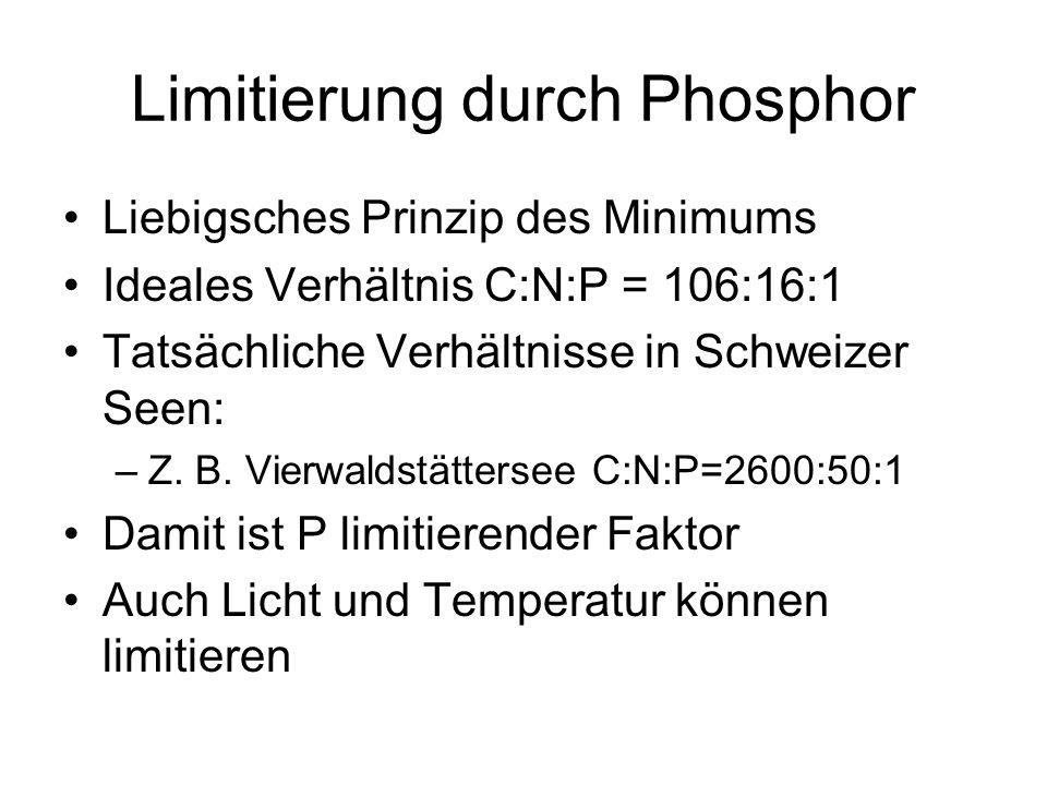 Limitierung durch Phosphor
