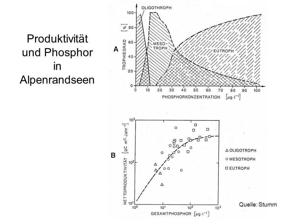 Produktivität und Phosphor in Alpenrandseen