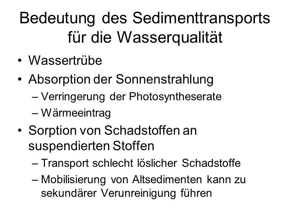 Bedeutung des Sedimenttransports für die Wasserqualität
